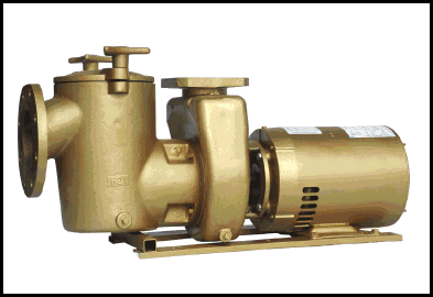 bronze pool pumps