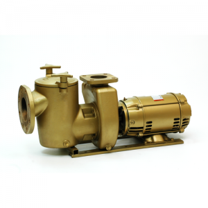 VM Bronze Pool Pump